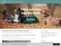 www.hundkursstockholm.nu