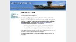www.loewengraben.ch Vorschau, Verein für tragbare Steuern