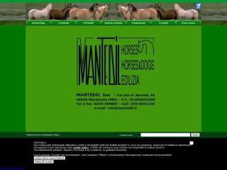 Screenshot del sito mantedil.it