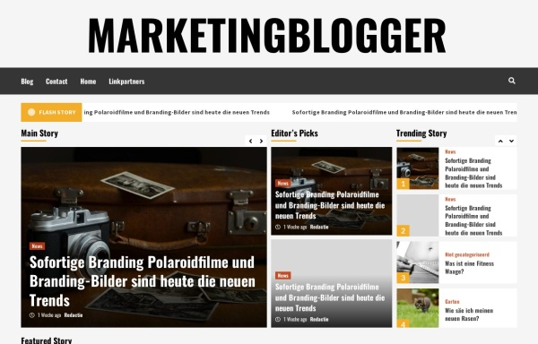 Vorschau von www.marketingblogger.de, Marketingblogger