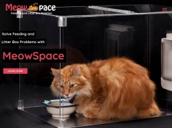 Meowspace coupon codes September 2018