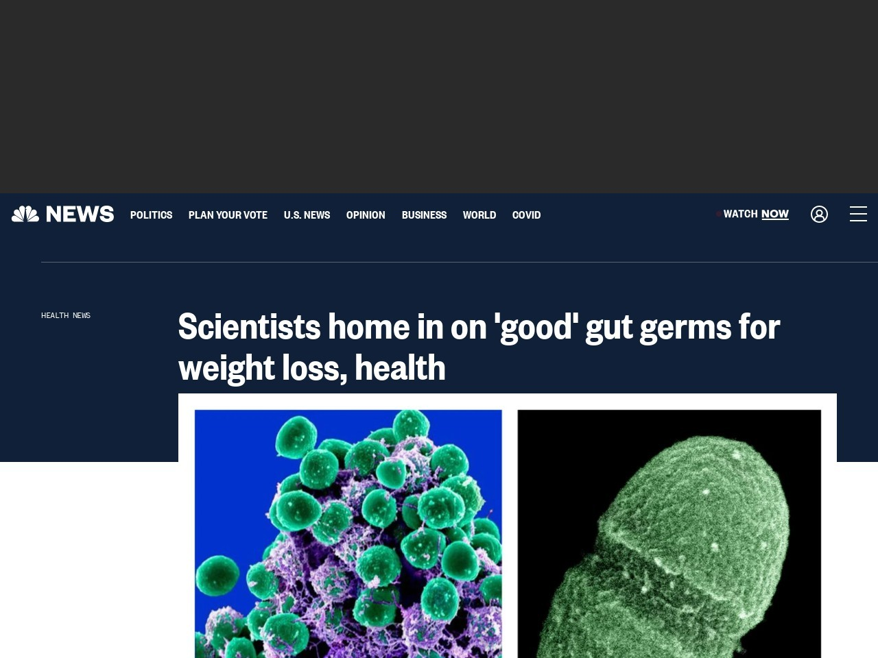 Scientists home in on 'good' gut germs for weight loss, health – NBC …
