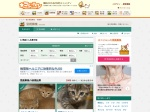 http://www.neko-jirushi.com/foster/?pref_id=2