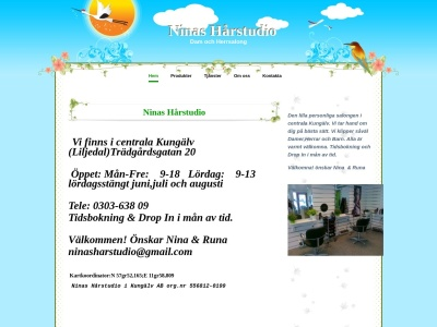 www.ninasharstudio.se