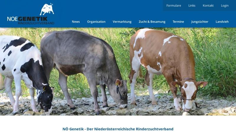www.noegenetik.at Vorschau, Noegenetik - Nö. Genetik Rinderzuchtverband