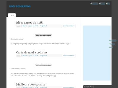 NoelDecoration.fr : sapins floqués et bouleaux peints