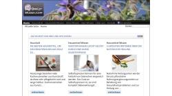 www.omis-wissen.com Vorschau, Omis Wissen