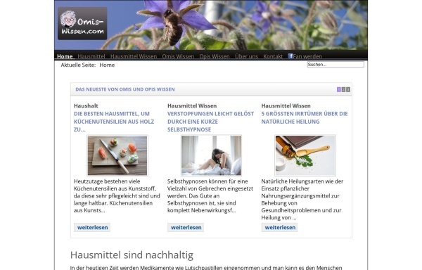 Vorschau von www.omis-wissen.com, Omis Wissen