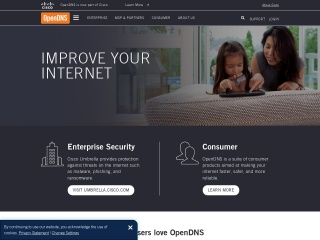 Screenshot for opendns.com