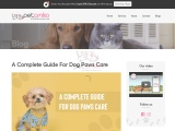 A Complete Guide For Dog Paws Care – Petamiko