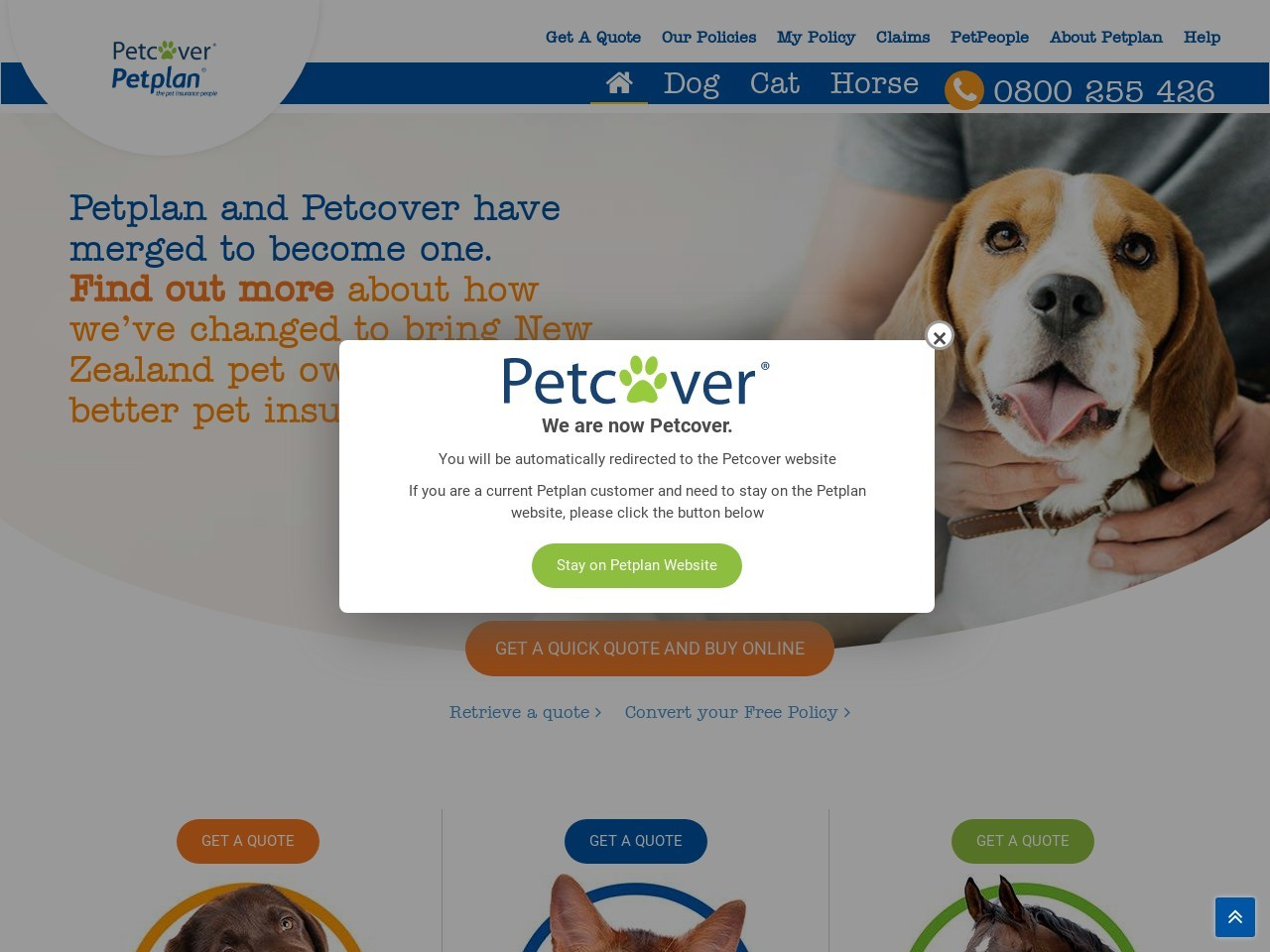 Best Pet Insurance New Zealand