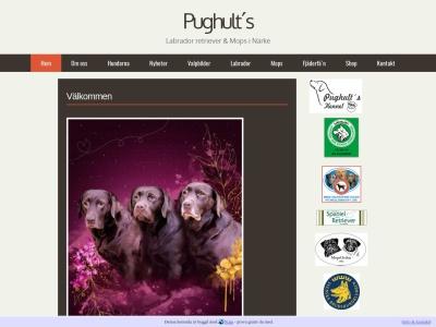 www.pughult.n.nu