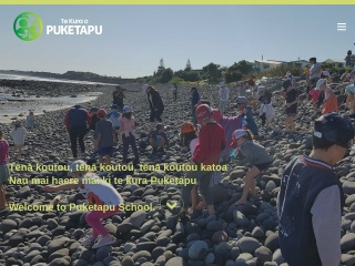 Screenshot for puketapu.school.nz