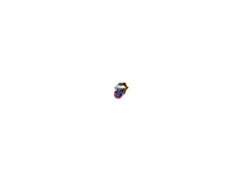 Wordpress-пен жасалған танымал сайттар