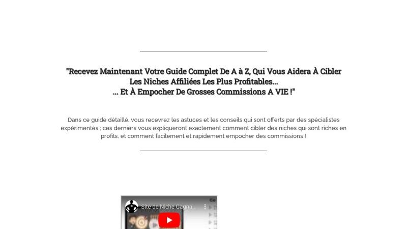 site de niche a succes
