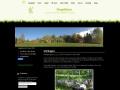 www.skogslyktan.se