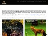 Top 10 Wildlife Tour At Kanha National Park