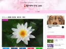 http://cutie-box.jpn.cm/