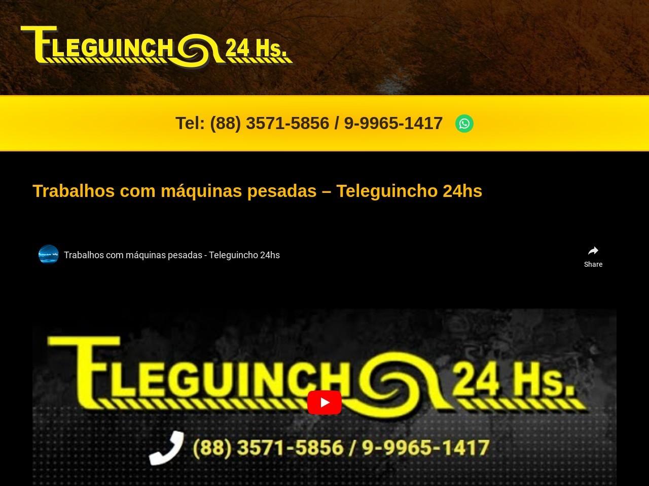http://www.teleguincho24hs.com.br
