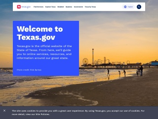 Screenshot for texas.gov