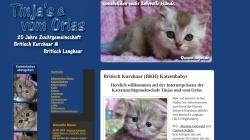 www.tinjas.de Vorschau, Tinjas und vom Orlas