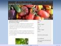 www.tomatas.n.nu