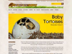 Tortoise Supply coupon codes December 2017
