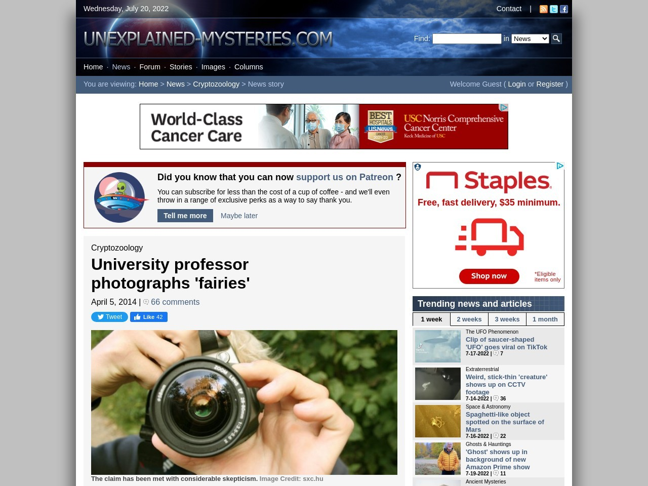 University professor photographs 'fairies'