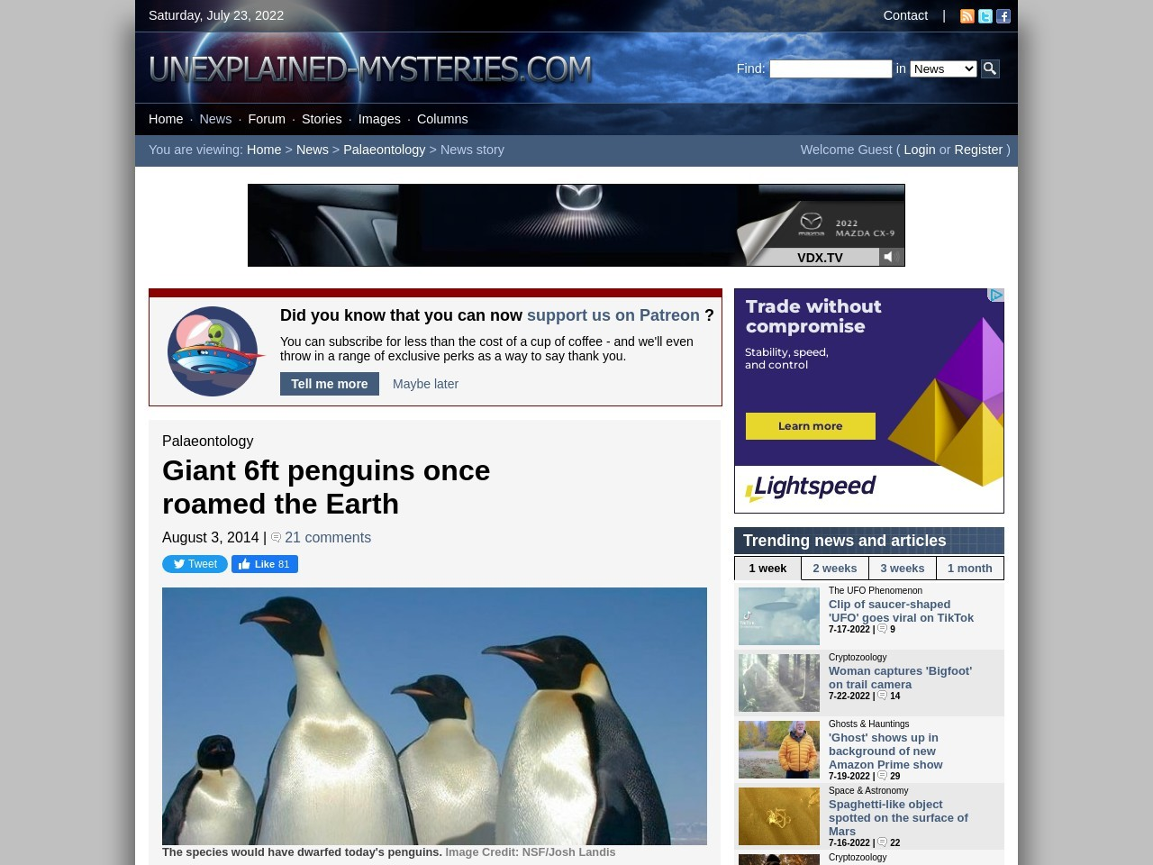 Giant 6ft penguins once roamed the Earth