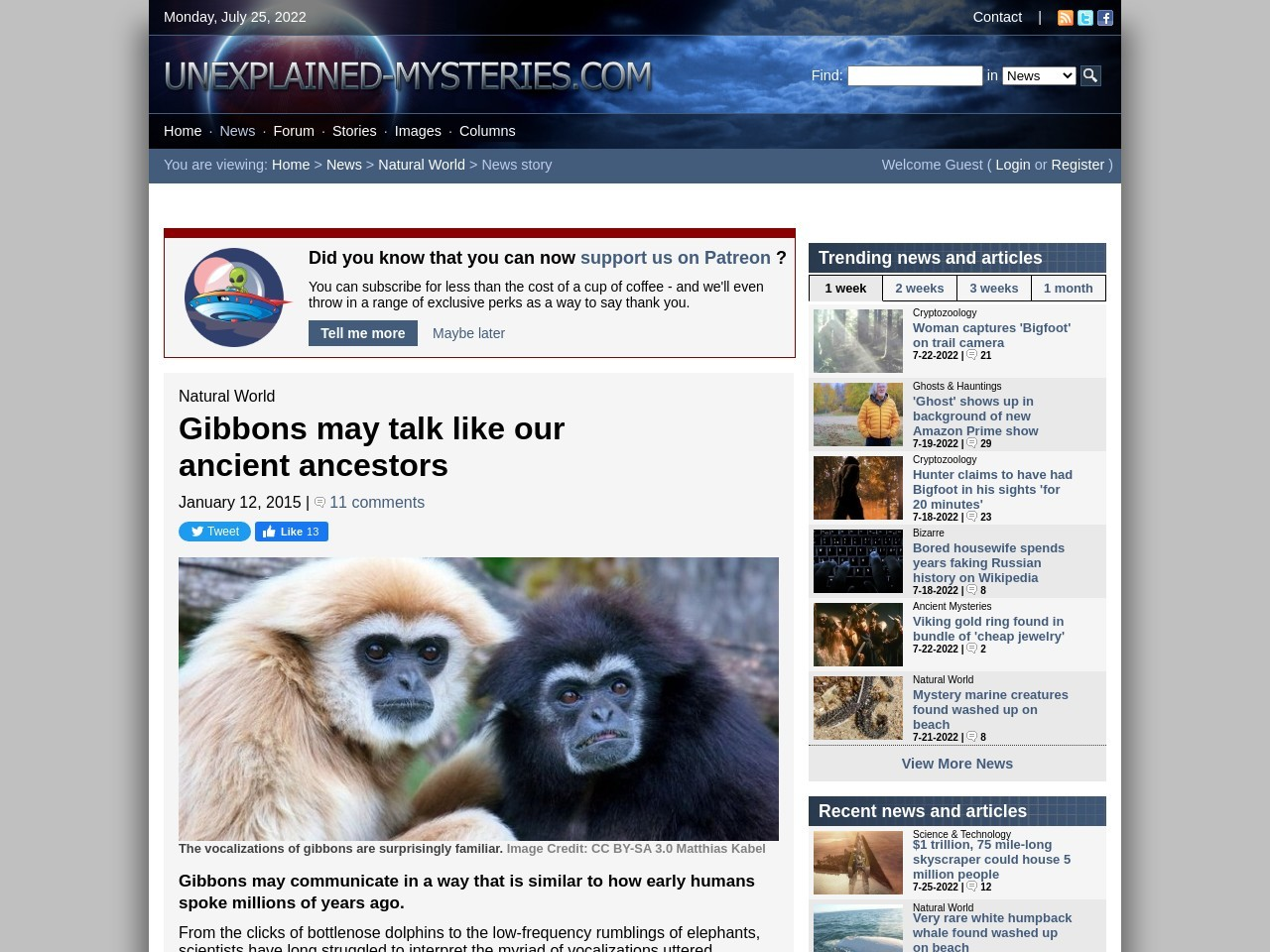 Gibbons may talk like our ancient ancestors
