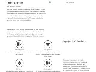 Zrzut ekranu strony vpartner.pl