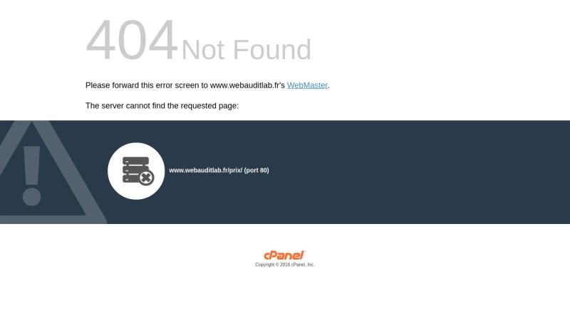 web audit entreprise