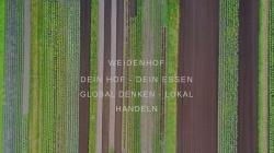 www.weidenhof.de Vorschau, Weidenhof