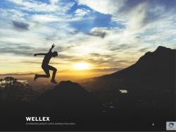 Well-Ex