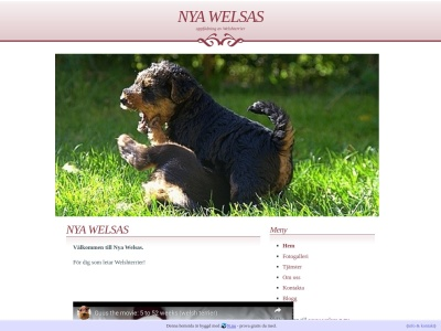 www.welsas.n.nu