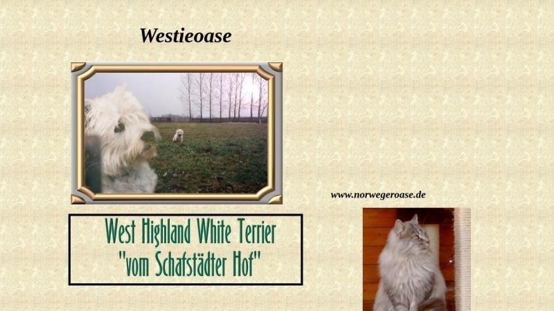 www.westieoase.de Vorschau, Westieoase