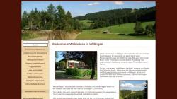 www.willingen-ferienhaus.com Vorschau, Ferienhaus Waldwiese
