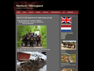 www.hästturerihälsingland.se