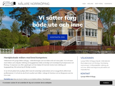 www.målarenorrköping.biz