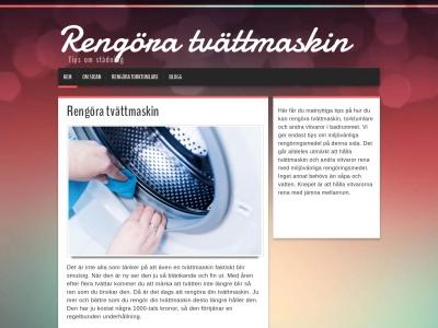 www.rengöratvättmaskin.se