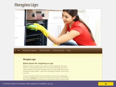www.rengöraugn.se