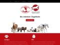 www.veterinärängelholm.se