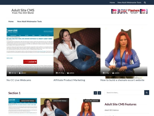 Adult Site CMS – Porn Webmaster News screenshot