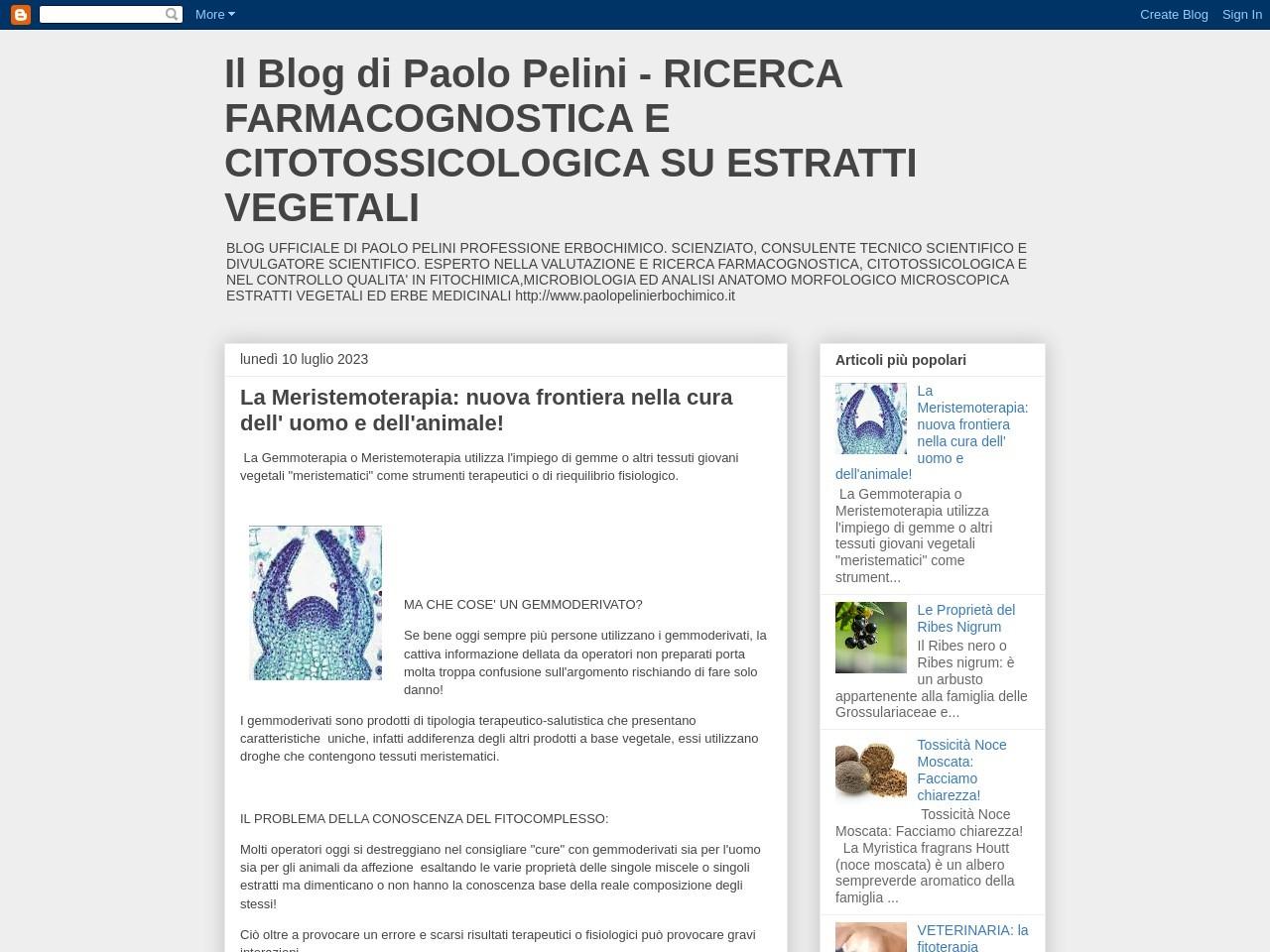 il-blog-di-paolo-pelini