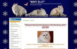 Brit Elit
