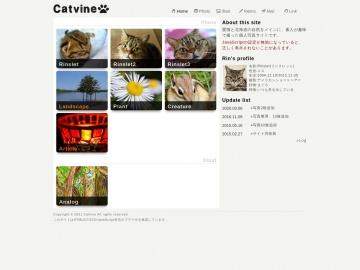 Catvine