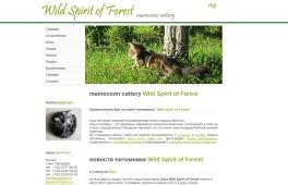 Wild Spirit of Forest