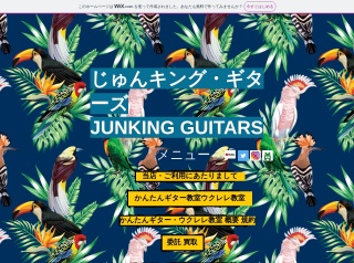 JUNKING GUITARS