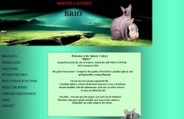 Brio-Soul