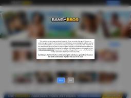 BangBros screenshot